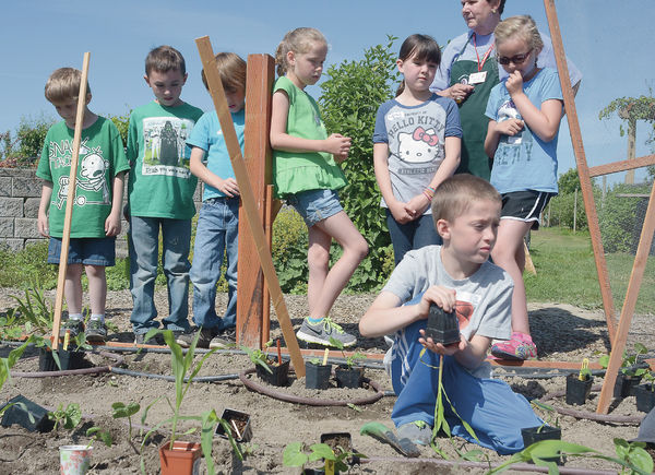 Kids learn about gardening, bugs and flowers at WSU Extension | All Access | goskagit.com