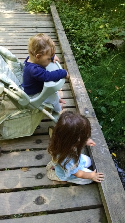 The kids take a break from walking to analyze a babbling brook.
