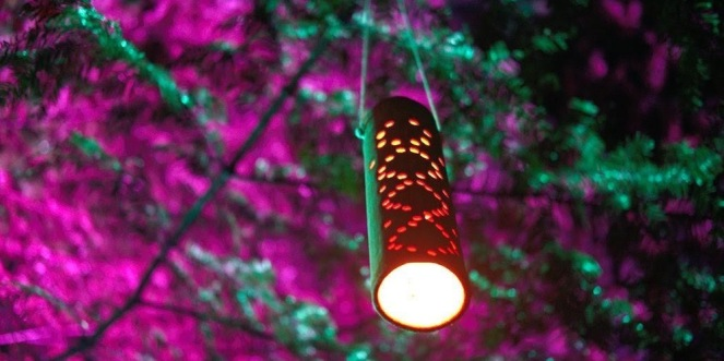 tubular lamp hanging from tree